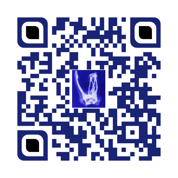 Lindemann Root Canal Specialists QR Code